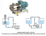 High shear homogenizer pump/ emulsifying pump