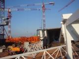 Minglong′s QTZ50(TC4810) tower crane exporting to Vietnam