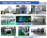 Holylaser Technology Company will come to market in June