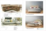 Desalen Catalogue 13