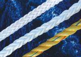 Premium Quality Polypropylene Rope