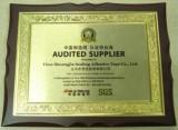 SGS auditor