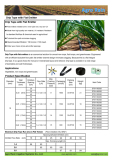 Agro Rain Drip Tape - Ideal irrigation solution for agriculture farmland