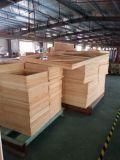 pinewood frame