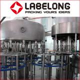 4L/5L Large bottle water filling machine plant