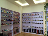 Colorful Samples Showroom