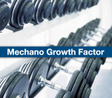 MGF 2mg/vial Mechano Growth Factor 221231-10-3