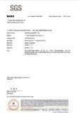 SGS Examining Report