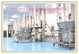 Process Line-Formulaiton WDG