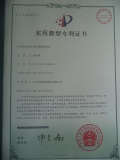 ringlock patent