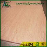 Bintangor plywood for furniture