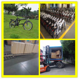 20′ Foldable Electric Bike For 20′ Container