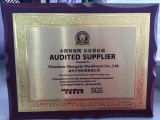 Audited Supplier of Made-in-china