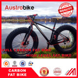 Customized full carbon fatbikes are best solution for your adventures
