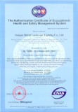 Occupation health system certification