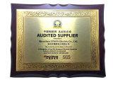 UPSEN Certificate & Honour
