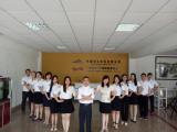 Company Capability