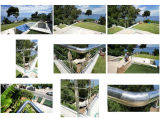 Stainless Steel Handrail Project for France