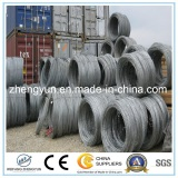 5.5mm Hot Rolled Steel Wire Rod Coils