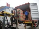Shipment No.13