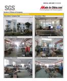 SGS REPORT 15