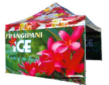 Digital Printing Advertising Pop up Tent ,Event Tent ,Canopy Tent