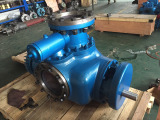 We export 8.4ZK twin screw pump to Indonesia