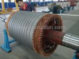 Rotor wiring