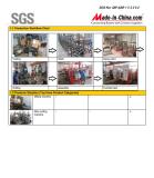 SGS REPORT 12