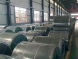 DX51D Galvanized Steel Sheet in Coils