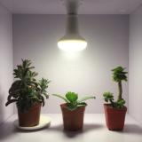 RA 97 led grow light bulb for cabinet plants