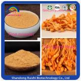 Chinese caterpillar fungus extract cordyceps polysaccharide