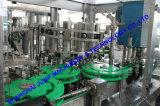 Saudi Arabia Tomato paste processing line