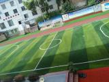 Artificial Grass for Soccer and Football with Good Price