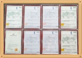 All Certificates of Fujiang Electric Vehicle