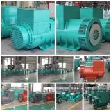 AC single phase or three phase bruless alternator