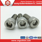 Stainless steel Hex socket head screw / Allen bolt DIN912