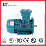 Asynchronous Ex-Proof Electrical AC Motor with High Speed