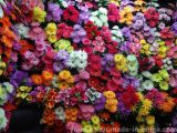 Cheap Artificial Flowers Show