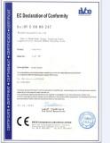 Gate valve CE