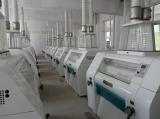 Wheat flour mill