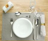 tableware +dinner plate