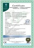 CE Certificate-Ringlock Scaffold