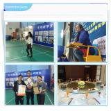 Anhui Medipharm Badminton Game