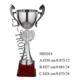 2013 New Design Metal Trophy Hb2024