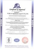 ISO9001 Certificate of Valves