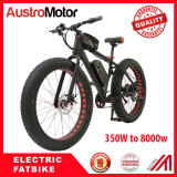 electric fatbike with 6000W with brushless motor and brushless controller