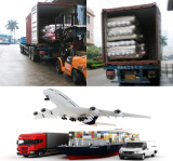 Chuangfang Company Transportation