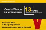 New Wisdom Ltd company development