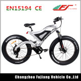 500W 48V Green Power Electric Bike with Dual Suspension Fork